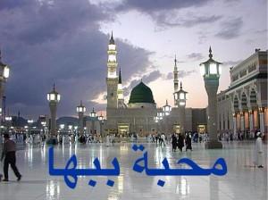 محمدن